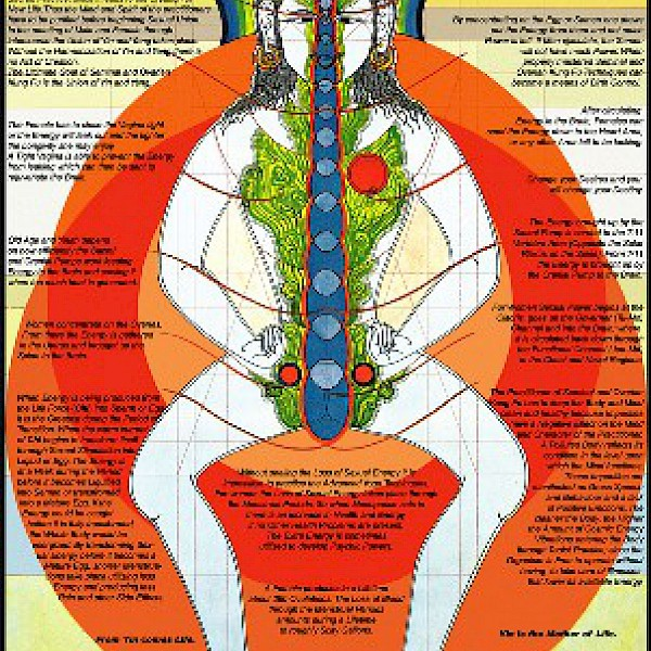 (4.)  ::: Awaken Your Sexual Alchemy ::: Selfcultivation & Multiorgasmic Couple